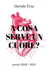 A cosa serve un cuore? (poesie 2002 - 2016) - Davide Uria