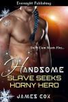 Handsome Slave Seeks Horny Hero - James   Cox