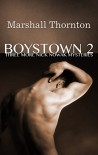 Boystown 2: Three More Nick Nowak Mysteries (Boystown Mysteries) - Marshall Thornton