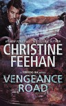 Vengeance Road (Torpedo Ink #2) - Christine Feehan