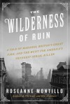 The Wilderness of Ruin: A Tale of Madness, Fire, and the Hunt for America's Youngest Serial Killer - Roseanne Montillo