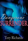 Dangerous Surrender - Tory Richards, Tammy Sommervold, Jody Faltys, Michelle Oxrider Snarky Mom Reads