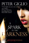 A Spark in the Darkness - Peter Giglio