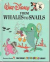 From Whales to Snails - Walt Disney Company