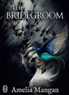 The Bridegroom - Amelia Mangan