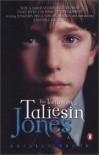The Testimony of Taliesin Jones - Rhidian Brook
