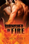Burnished by Fire  - Andrew  Grey