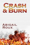 Crash & Burn - Abigail Roux