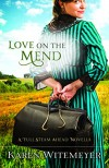 Love on the Mend (Ebook Shorts): A Full Steam Ahead Novella - Karen Witemeyer