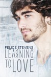 Learning to Love - Felice Stevens