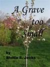 A Grave Too Small - Sheila S. Jecks