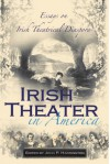 Irish Theater in America: Essays on Irish Theatrical Diaspora - John P. Harrington