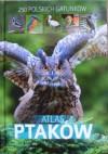 Atlas ptaków. 250 polskich gatunków - Dominik Marchowski