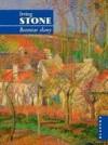 Bezmiar sławy - Stone Irving