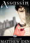 Assassin - Matthew Iden