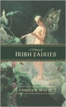 A History of Irish Fairies - Carolyn White
