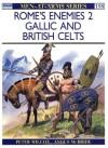 Rome's Enemies (2): Gallic and British Celts - Peter Wilcox