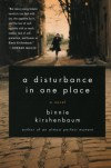 A Disturbance in One Place: A Novel - Binnie Kirshenbaum