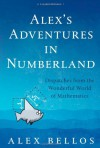 Alex's Adventures In Numberland - Alex Bellos