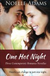 One Hot Night: Three Contemporary Romance Novellas - Noelle  Adams