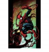 Ultimate Spider-Man, Vol. 11: Carnage - Brian Michael Bendis, Mark Bagley