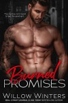Burned Promises - Willow Winters