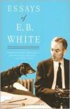 Essays of E. B. White -
