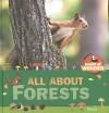 All About Forests (Mack's World of Wonder) - Mack van Gageldonk