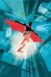 Batman Beyond: Industrial Revolution - Adam Beechen, Dustin Nguyen, Darwyn Cooke