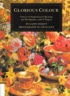 Glorious Colour: Sources of Inspiration for Knitting and Needlepoint, with 17 Projects - Kaffe Fassett, Steve Lovi