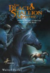The Black Stallion Mystery - Walter Farley