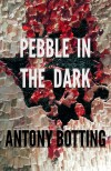 Pebble in the Dark - Antony Botting