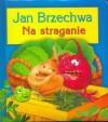 Na straganie - Jan Brzechwa