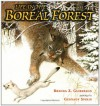Life in the Boreal Forest - Brenda Z. Guiberson, Gennady Spirin
