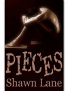 Pieces - Shawn Lane