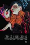 Czeski underground. Wybór tekstów z lat 1969-1989 - Martin Machovec