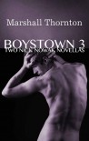 Boystown 3: Two Nick Nowak Novellas - Marshall Thornton