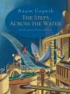 The Steps Across the Water - Adam Gopnik