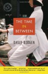 The Time In Between: A Novel - David Bergen