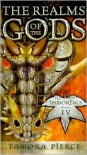 The Realms Of The Gods (The Immortals #4) - Tamora Pierce