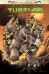 Teenage Mutant Ninja Turtles: Turtles in Time - Paul Allor, Erik Burnham, Ross Campbell, Charles Paul,  III Wilson, Ben Bates
