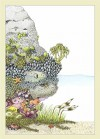 Fylling's Illustrated Guide to Pacific Coast Tide Pools - Forword by Chris Giorni, Marni Fylling