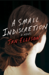 A Small Indiscretion - Jan Ellison