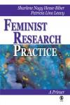 Feminist Research Practice: A Primer - Sharlene Hesse-Biber