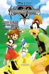Kingdom Hearts: Chain of Memories The Novel - Tomoco Kanemaki, Tetsuya Nomura, Daisuke Watanabe