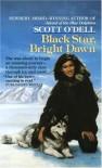 Black Star, Bright Dawn - Scott O'Dell