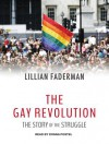 The Gay Revolution: The Story of the Struggle - Lillian Faderman, Donna Postel