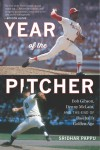 The Year of the Pitcher: Bob Gibson, Denny McLain, and the End of Baseball's Golden Age - Sridhar Pappu