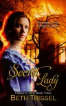 Secret Lady (Ladies in Time, #3) - Beth Trissel