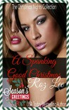 A Spanking Good Christmas: A Kinky Christmas Short Story (Christmas Nights Collection) - Roz Lee